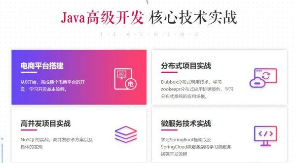 Java高级开发核心技术实战