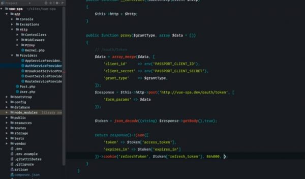 Laravel Vue 开发 SPA 应用 课程视频截图