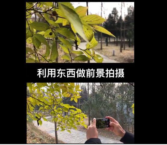 冯朋手机摄影 剪映视频剪辑课程 视频截图