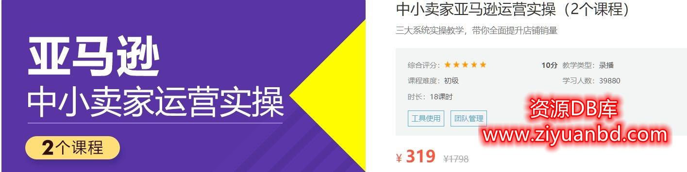 价值319元中小卖家亚马逊运营实操含选品·试营·团队管理插图1