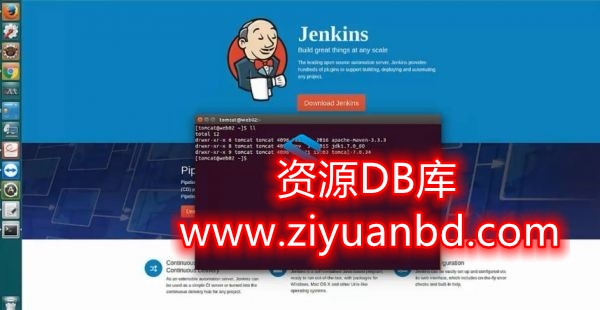 IT技能培训-自动化运维工程师必备利器-基于Jenkins轻松实现企业级持续集成 Docker+Jenkins实战-服务器技术  -资源BD库分享插图1